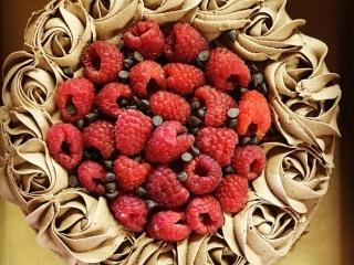 Double Chocolate Raspberry Layer Cake (Gluten-Free, Vegan, Soy-Free, Dairy-Free)